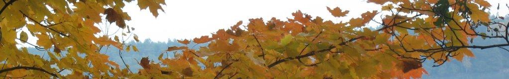 panorama-pazdziernik-01